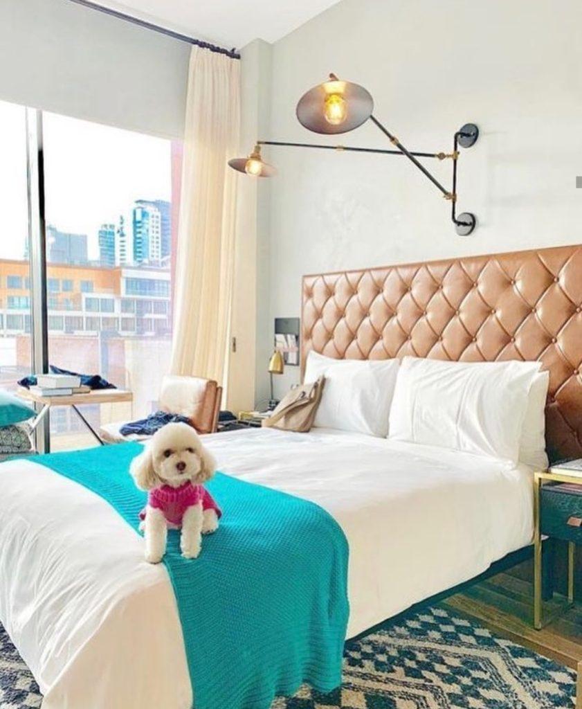 The Williamsburg Hotel Brooklyn New York