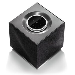 naim portable speaker